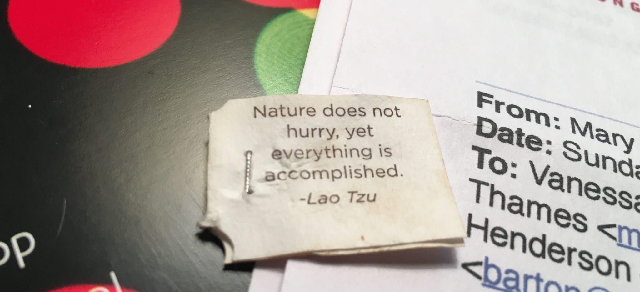 Wisdom from a Tea Bag…